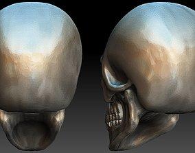3D print model bone Skull