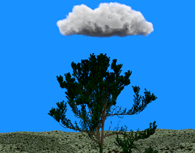 Tree Enviroment 3D model