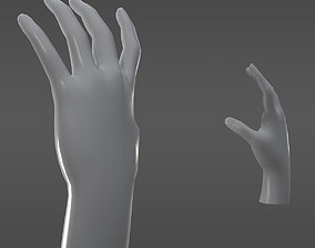 3D asset Game resolution hands