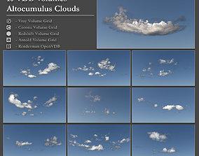3D model Clouds - Volumetric OpenVDB AltoCumulus Clouds
