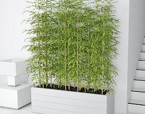 Bamboo 03 3D