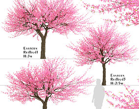 Set of Eastern redbud or Cercis canadensis Trees - 3 3D
