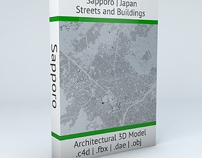 3D Sapporo Streets and Buildings