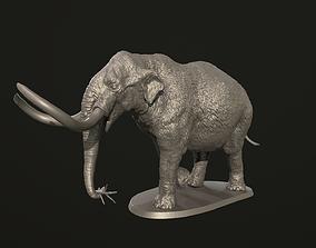 Mammut americanum 3D print model