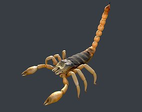 3D asset Scorpion rigged GAME READY