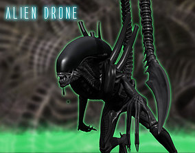 Xenomorph Alien Drone 3D model rigged