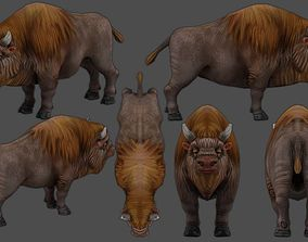 3D asset Bison Bull