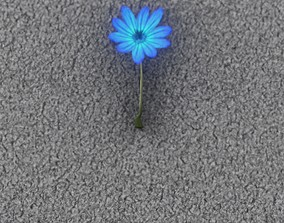 3D asset Blue Flower - Verion 5 - Object 35