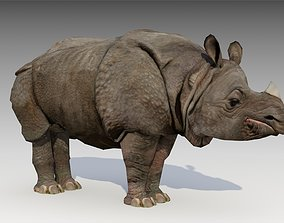 Asian Rhinoceros Animated 3D asset