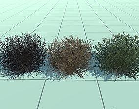 3D model low-poly bush