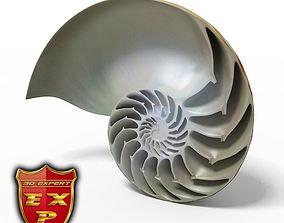 Seashell Nautilus sliced 3D