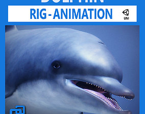 3D asset low-poly Animated Dolphin