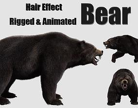 bear grizzly brown bear black bear 3D model animated
