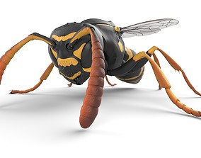 Paper Wasp Low-poly 3D model game-ready