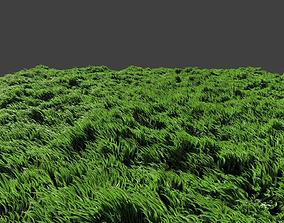 3D Grass waving in wind