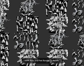 3D model IMM Arms and Feet Bundle