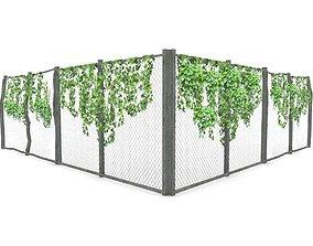Ivy on Fence 3D model