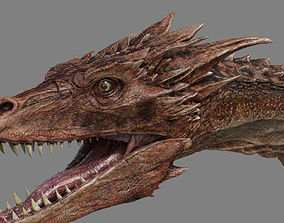 Dragon Animations 3D asset