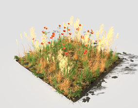 3D model Poppy Meadow Patch and Free Gift