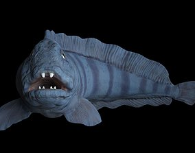 3D Atlantic Wolf Fish