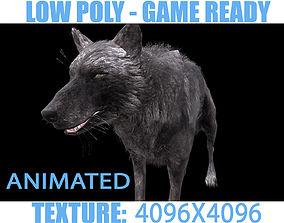 Black Wolf animated 3D model