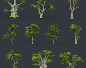 3D model Low Poly 10 Tree Collection