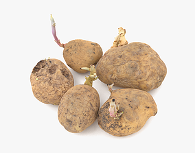Old Potatoes with Sprouts 3D model VR / AR ready