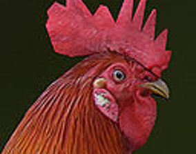 Rooster rigged animated and textured 3D asset