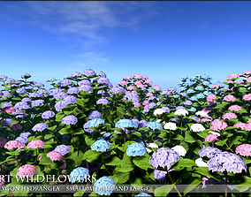 3D model Low Polygon Hydrangeas for Games and 1