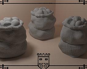 3D print model Medieval fantasy bag 2