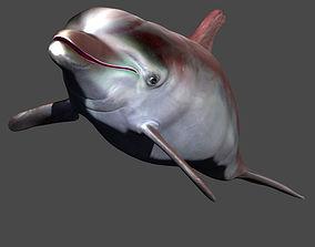 VR / AR ready 3d model dolphin obj
