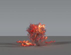 3D model Fire Explosion 05 - VDB