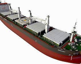 3D model Bulk carrier with holds and reservoirs