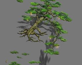 3D model Zen - cliff pine