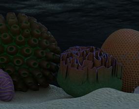 Coral Types 3D model