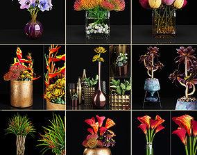 Plant collection 2 3D model