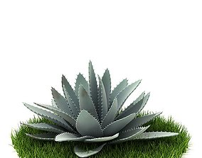 Pale Cactus 3D