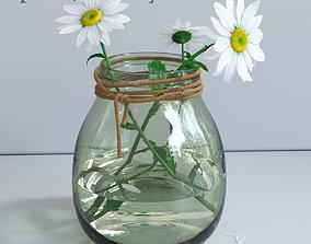 Spring daisy set 3D model