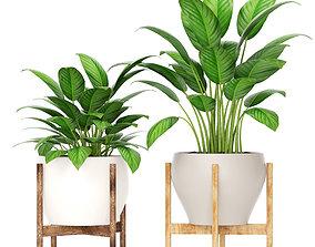 3D model Plants collection vase