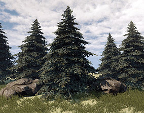 3D asset Fir Tree