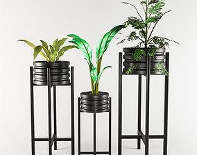 Vase Pack 1 3D asset