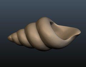 3D print model Seashell