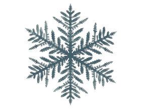 snowflake 3D model