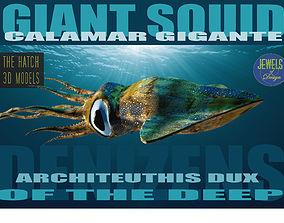 3D model Giant Squid