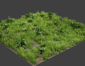 3D model Grass And Plants