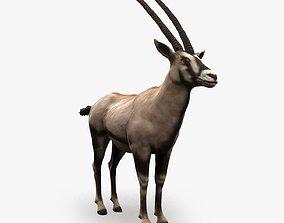 3D model Oryx Antelope Low Poly