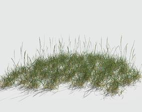 3D Perennial Ryegrass Pack