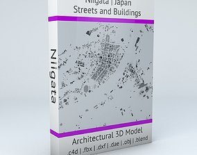 Niigata Streets and Buildings 3D model