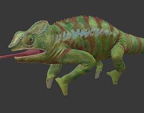 3D model realtime Chameleon