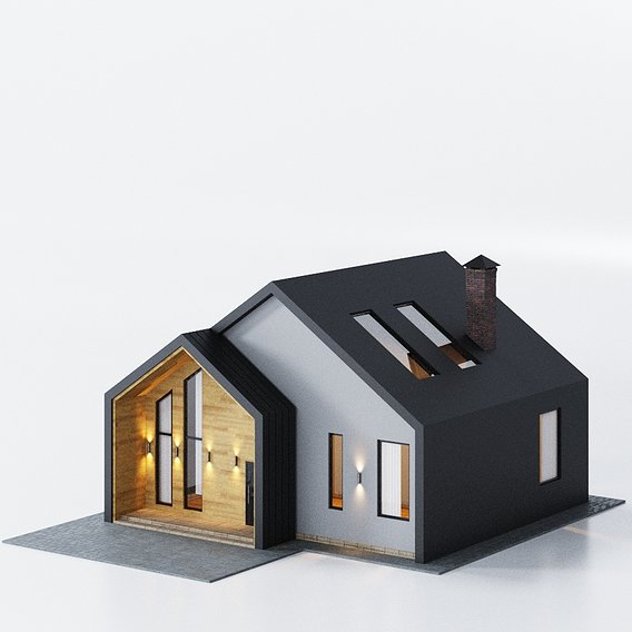 Modern House 01